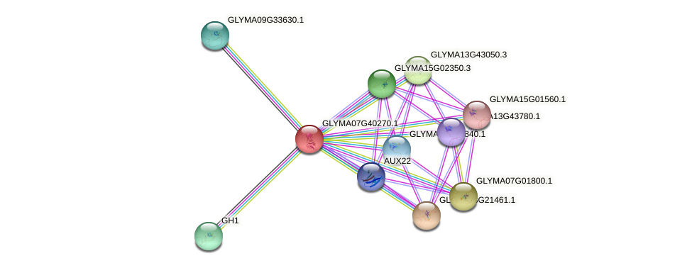 GLYMA07G40270.1 protein (Glycine max) - STRING interaction network