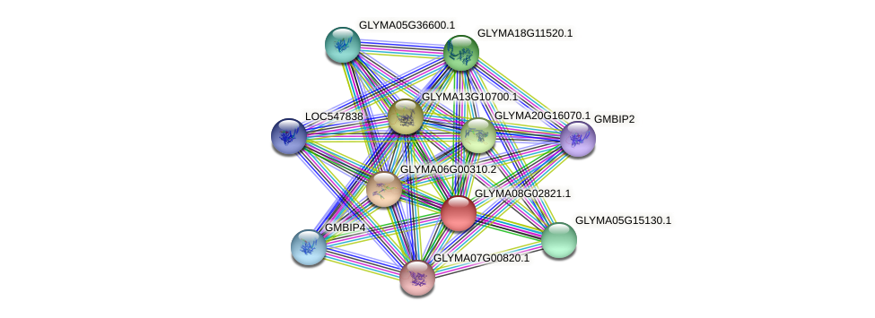GLYMA08G02821.1 protein (Glycine max) - STRING interaction network