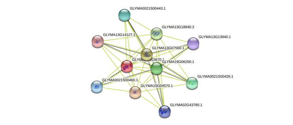 SGlu7 protein (Glycine max) - STRING interaction network