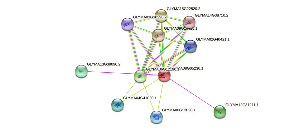 GLYMA08G05230.1 protein (Glycine max) - STRING interaction network
