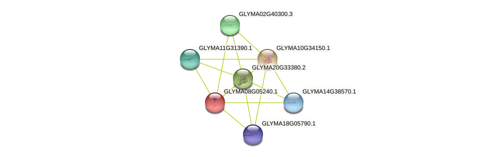 GLYMA08G05240.1 protein (Glycine max) - STRING interaction network