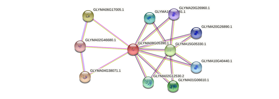 GLYMA08G05390.1 protein (Glycine max) - STRING interaction network