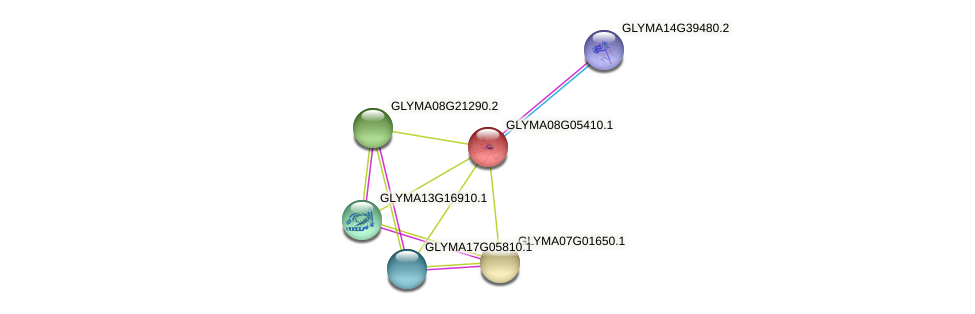 GLYMA08G05410.1 protein (Glycine max) - STRING interaction network