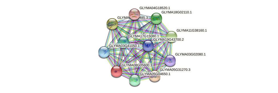 GLYMA08G05600.1 protein (Glycine max) - STRING interaction network