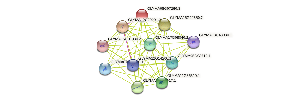 GLYMA08G07260.3 protein (Glycine max) - STRING interaction network