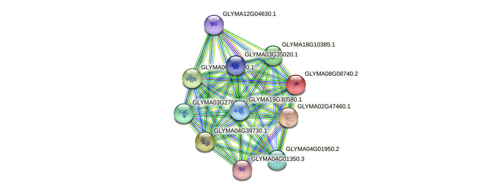 GLYMA08G08740.2 protein (Glycine max) - STRING interaction network