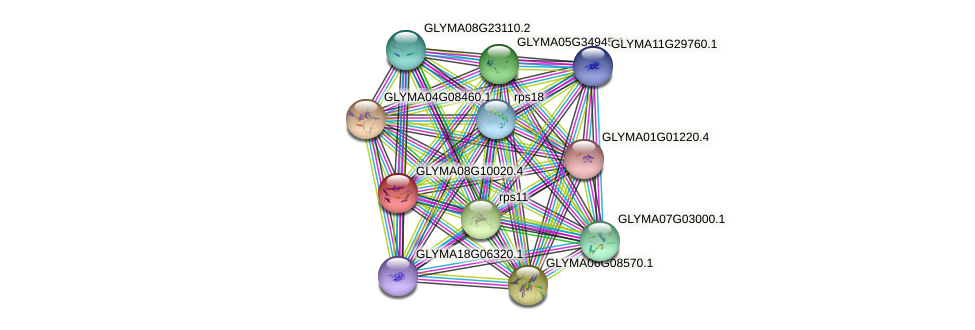 GLYMA08G10020.4 protein (Glycine max) - STRING interaction network