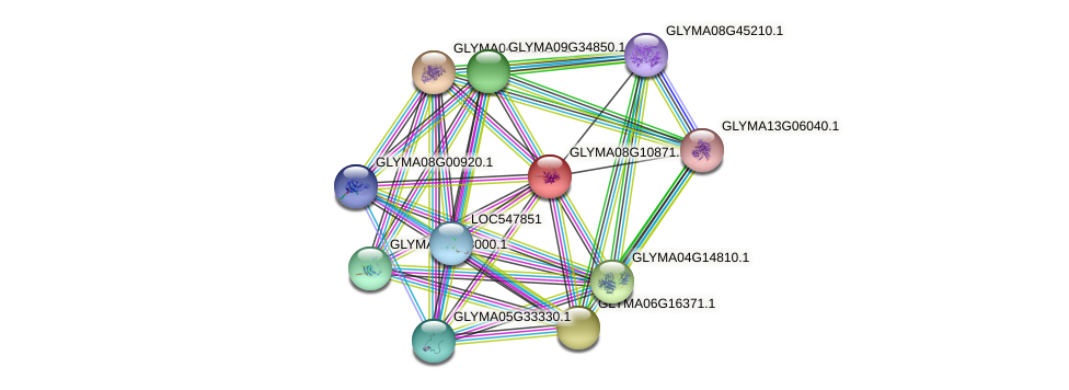 GLYMA08G10871.1 protein (Glycine max) - STRING interaction network
