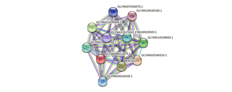 GLYMA08G11970.1 protein (Glycine max) - STRING interaction network