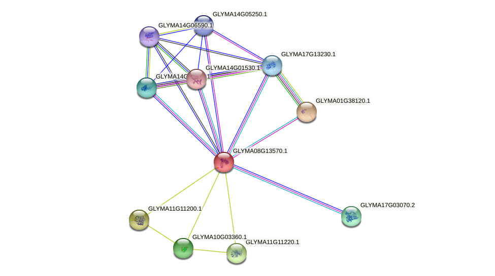 GLYMA08G13570.1 protein (Glycine max) - STRING interaction network