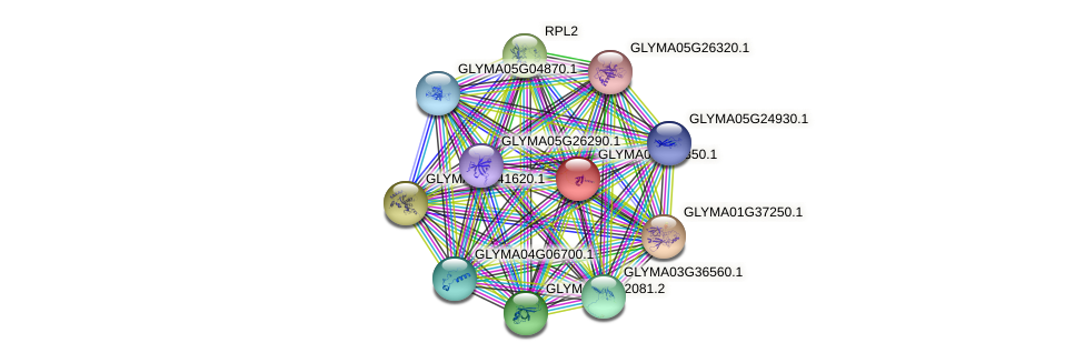 GLYMA08G14350.1 protein (Glycine max) - STRING interaction network