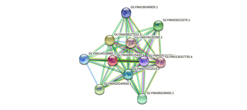 GLYMA08G15420.1 protein (Glycine max) - STRING interaction network