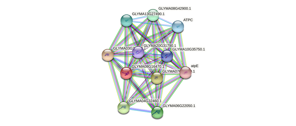 GLYMA08G16470.1 protein (Glycine max) - STRING interaction network