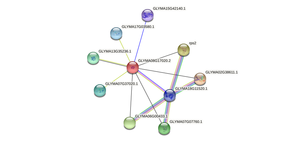 GLYMA08G17020.2 protein (Glycine max) - STRING interaction network