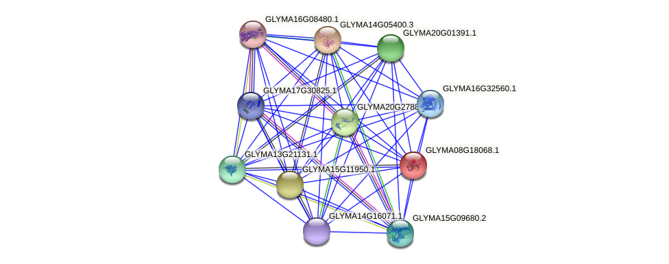 GLYMA08G18068.1 protein (Glycine max) - STRING interaction network