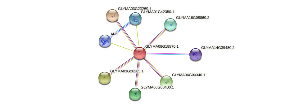 GLYMA08G18870.1 protein (Glycine max) - STRING interaction network