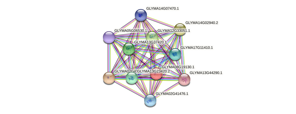 GLYMA08G19130.1 protein (Glycine max) - STRING interaction network