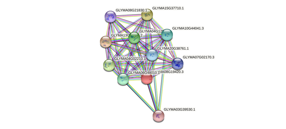 GLYMA08G19420.3 protein (Glycine max) - STRING interaction network