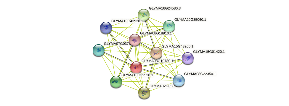 GLYMA08G19780.1 protein (Glycine max) - STRING interaction network