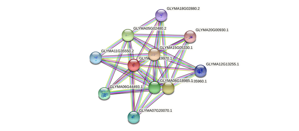 GLYMA08G19970.1 protein (Glycine max) - STRING interaction network
