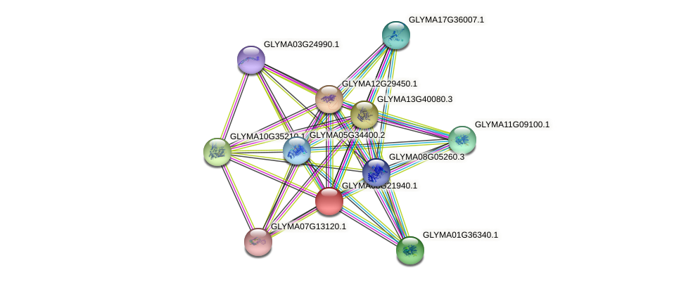 GLYMA08G21940.1 protein (Glycine max) - STRING interaction network
