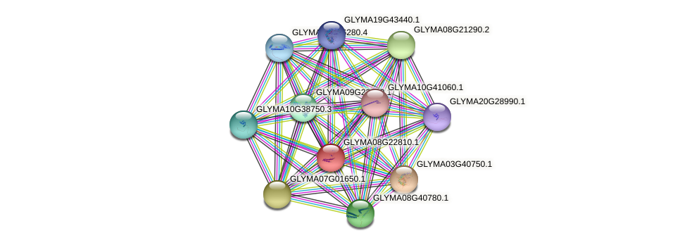 GLYMA08G22810.1 protein (Glycine max) - STRING interaction network
