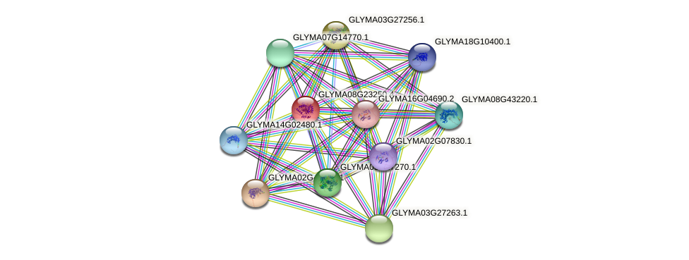 GLYMA08G23250.3 protein (Glycine max) - STRING interaction network