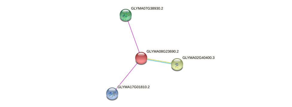 GLYMA08G23690.2 protein (Glycine max) - STRING interaction network
