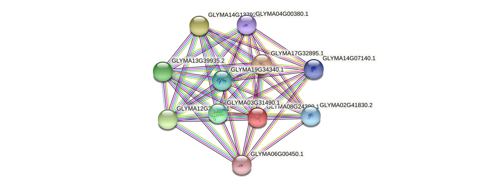 GLYMA08G24380.1 protein (Glycine max) - STRING interaction network