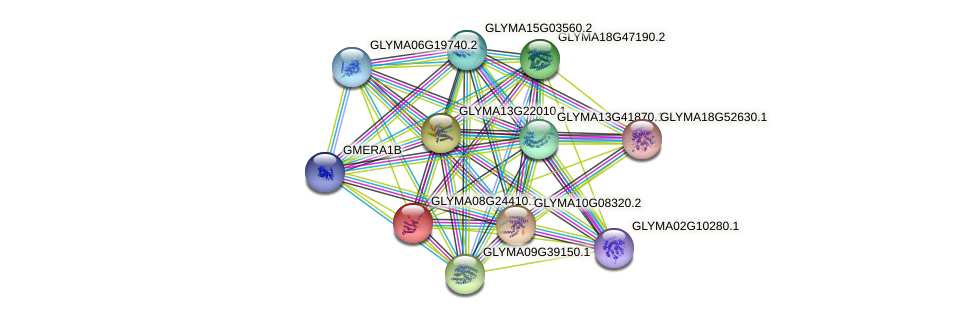 GLYMA08G24410.1 protein (Glycine max) - STRING interaction network