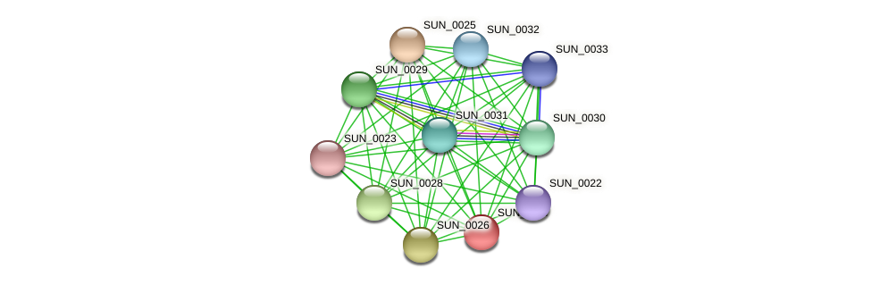 SUN_0027 protein (Sulfurovum sp. NBC371) - STRING interaction network