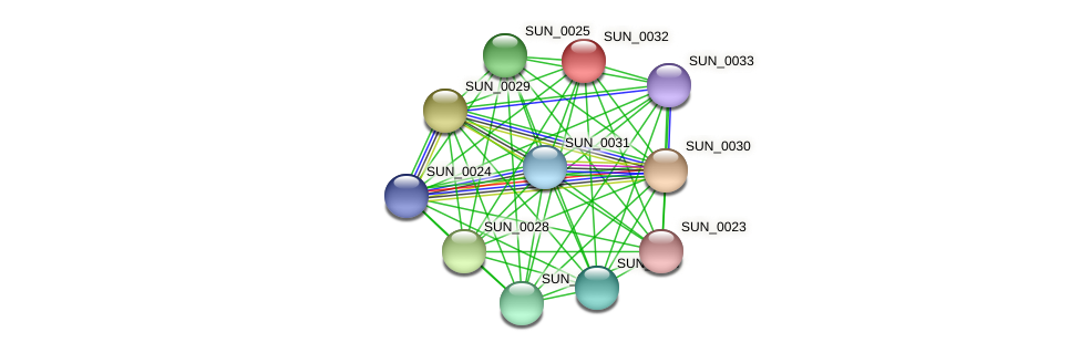 SUN_0032 protein (Sulfurovum sp. NBC371) - STRING interaction network