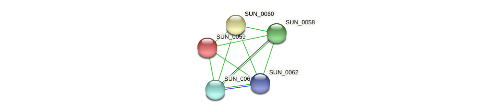 SUN_0059 protein (Sulfurovum sp. NBC371) - STRING interaction network