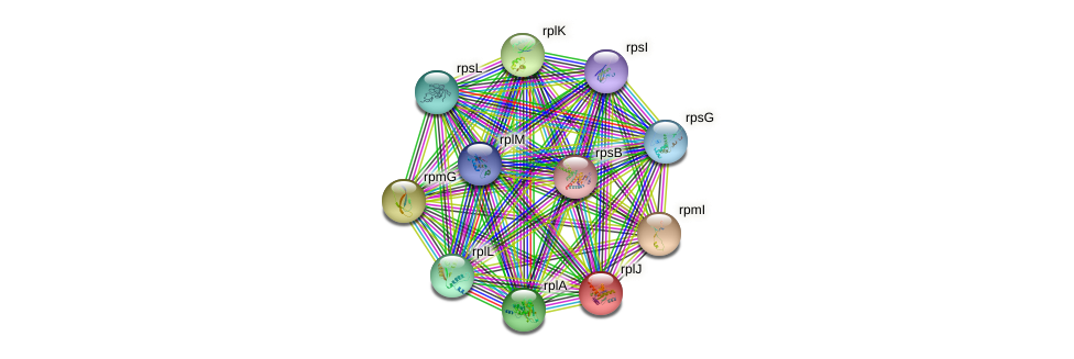 rplJ protein (Sulfurovum sp. NBC371) - STRING interaction network