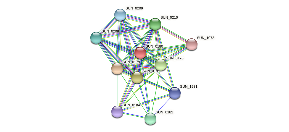 SUN_0180 protein (Sulfurovum sp. NBC371) - STRING interaction network