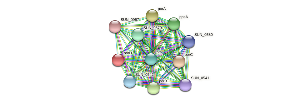 porD protein (Sulfurovum sp. NBC371) - STRING interaction network