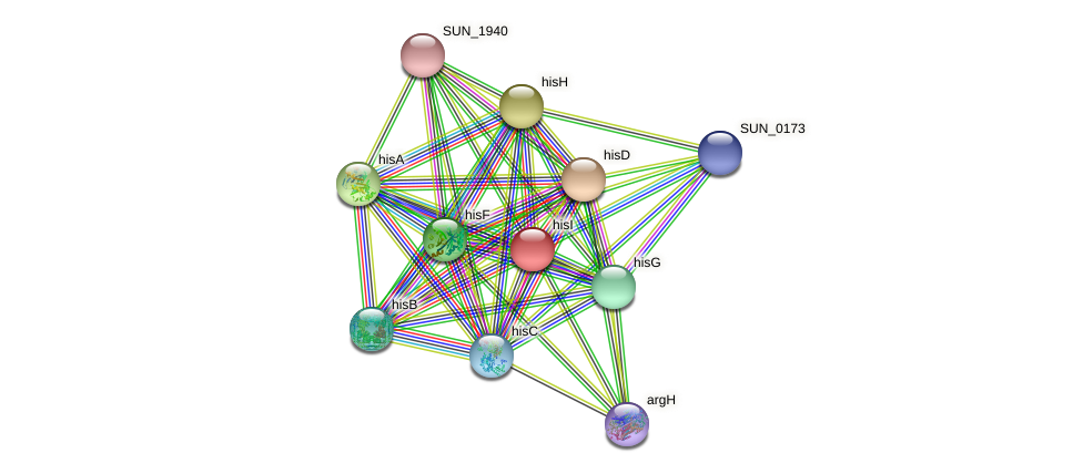 hisI protein (Sulfurovum sp. NBC371) - STRING interaction network