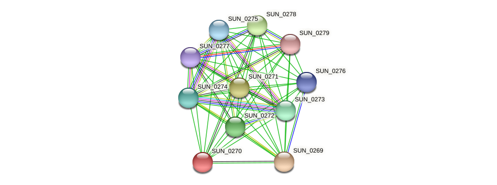 SUN_0270 protein (Sulfurovum sp. NBC371) - STRING interaction network