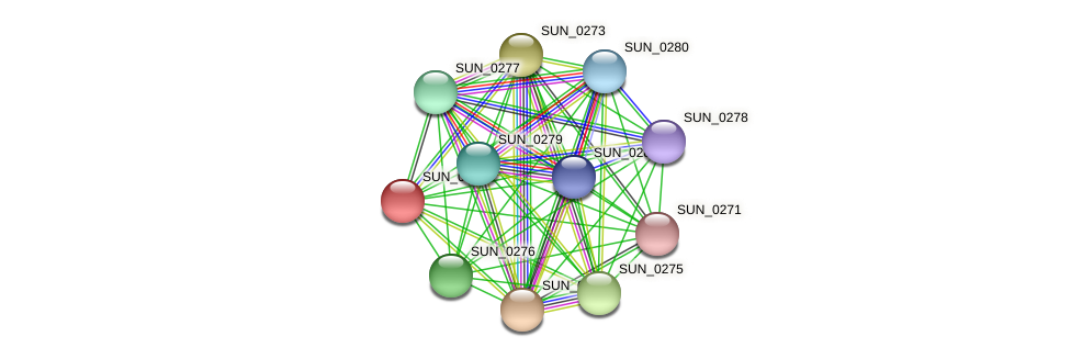 SUN_0272 protein (Sulfurovum sp. NBC371) - STRING interaction network