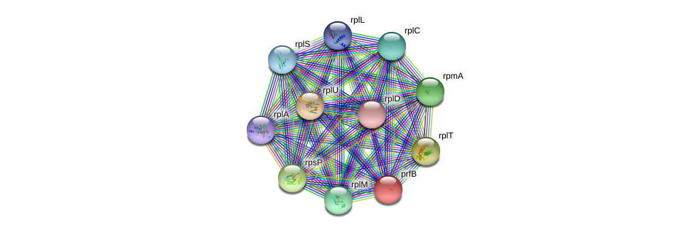 prfB protein (Sulfurovum sp. NBC371) - STRING interaction network