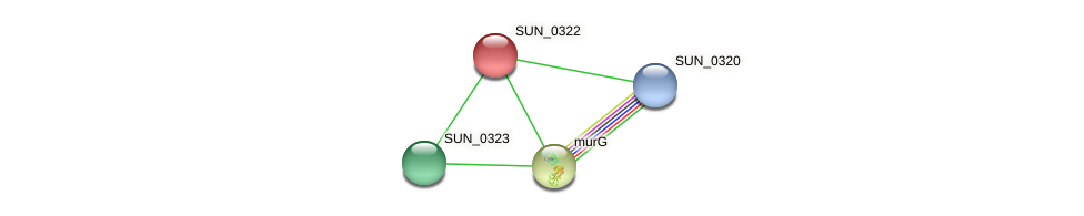 SUN_0322 protein (Sulfurovum sp. NBC371) - STRING interaction network