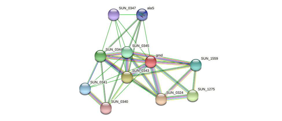 gmd protein (Sulfurovum sp. NBC371) - STRING interaction network