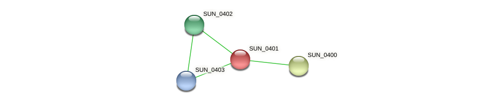 SUN_0401 protein (Sulfurovum sp. NBC371) - STRING interaction network