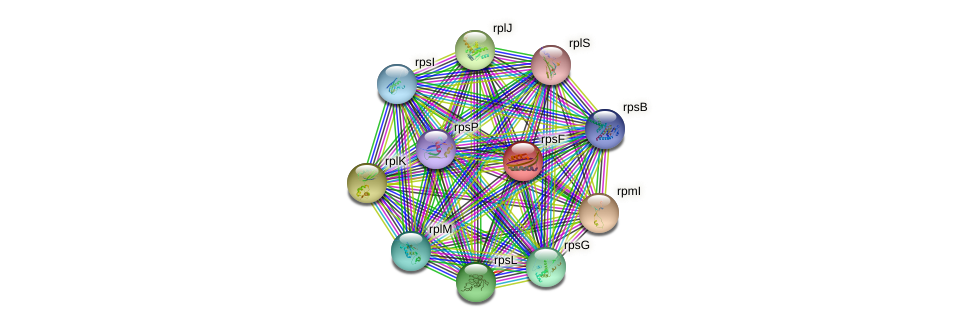 rpsF protein (Sulfurovum sp. NBC371) - STRING interaction network