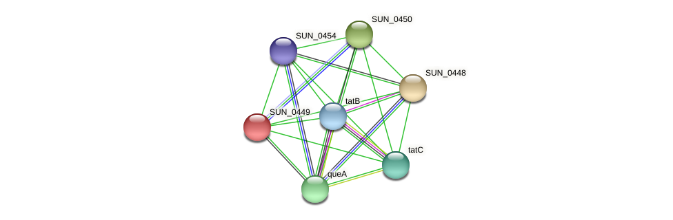 SUN_0449 protein (Sulfurovum sp. NBC371) - STRING interaction network