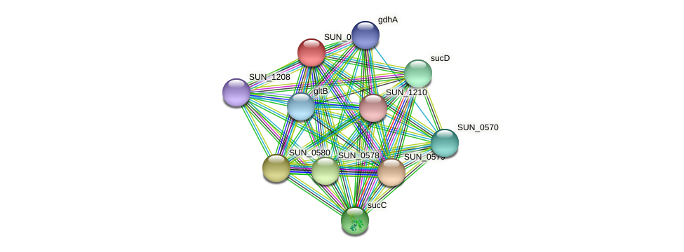 SUN_0581 protein (Sulfurovum sp. NBC371) - STRING interaction network