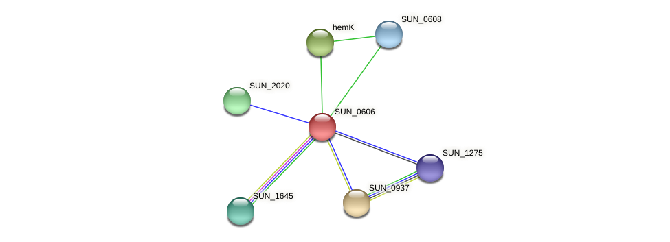 SUN_0606 protein (Sulfurovum sp. NBC371) - STRING interaction network