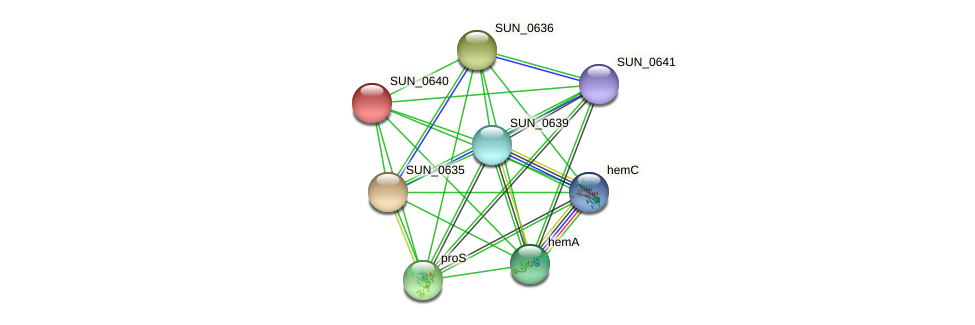 SUN_0640 protein (Sulfurovum sp. NBC371) - STRING interaction network