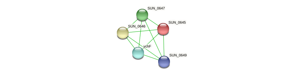 SUN_0645 protein (Sulfurovum sp. NBC371) - STRING interaction network