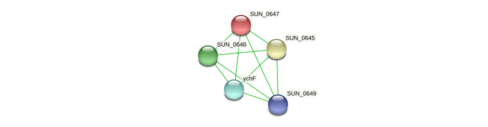 SUN_0647 protein (Sulfurovum sp. NBC371) - STRING interaction network